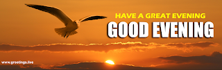Good Evening Flying birds sunset greetings wishes