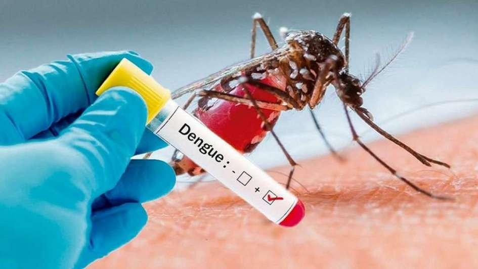 microBIO: ¿Es el dengue una enfermedad de transmisión sexual?