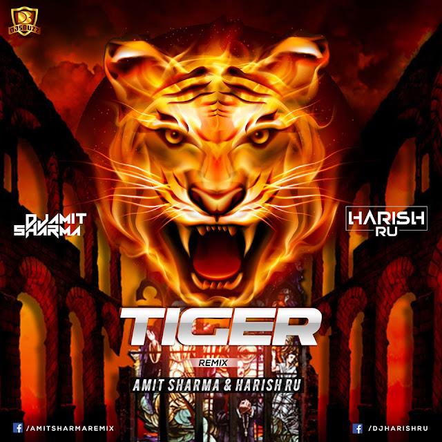 TIGER (REMIX) – AMIT SHARMA & HARISH R.U