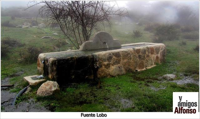 Fuente Lobo - AlfonsoyAmigos