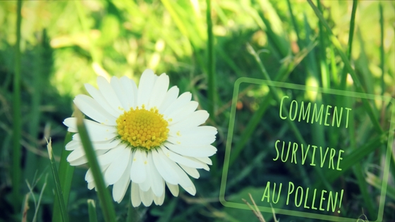 Comment survivre au Pollen? Allergie du printemps
