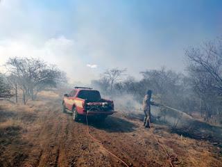 Sertão da PB registra mais de 300 incêndios, nos últimos meses