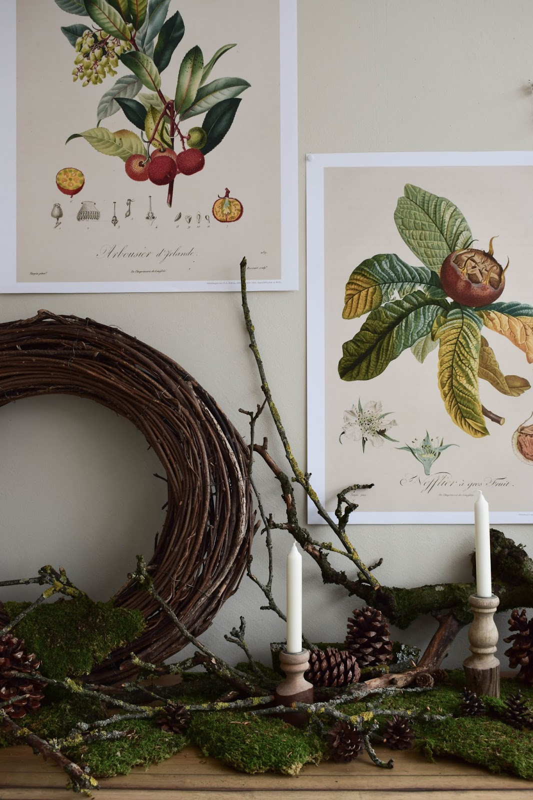 Naturdeko mit Moos Ästen Kranz Zapfen Kalender 2019 mit botanischen Zeichnungen Drucke Poster Deko Dekoidee Wanddeko von DUMONT teNeues