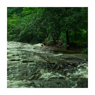 dhoni waterfall