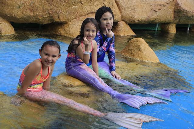 Manila Ocean Park Encounters