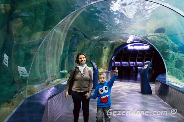 İstanbul Akvaryum Florya su altı tünelinde oğlumla