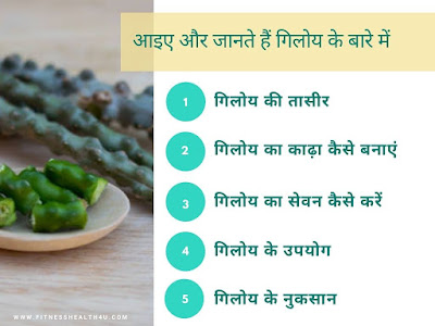 गिलोय जूस के फायदे और नुकसान   Benefits and side effects of Giloy juice in hindi