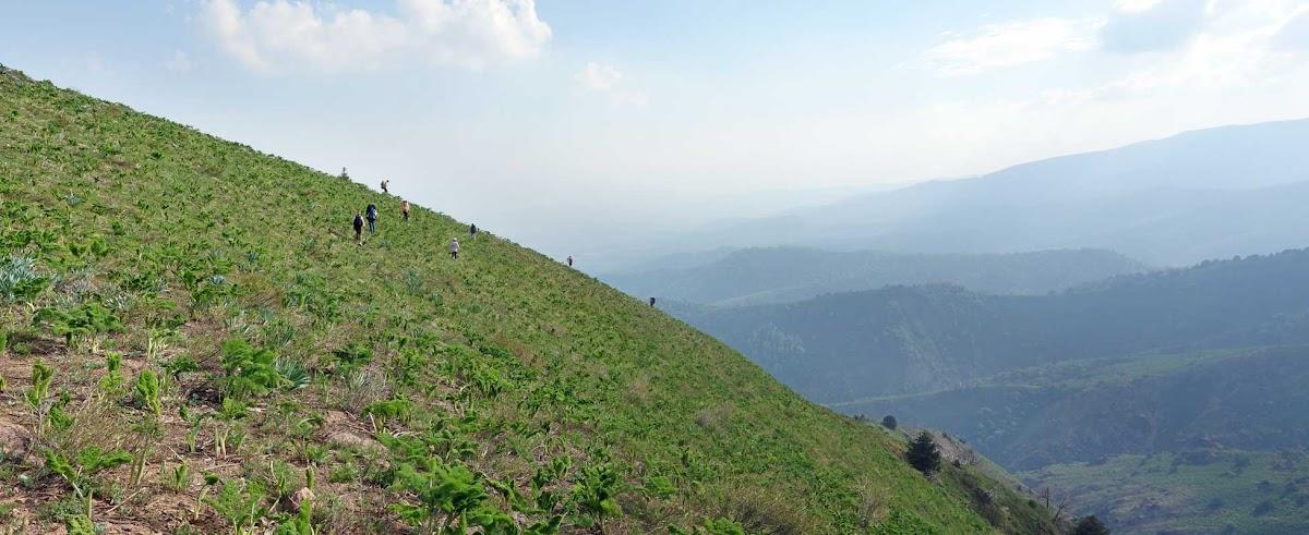 DSC08613 Panorama