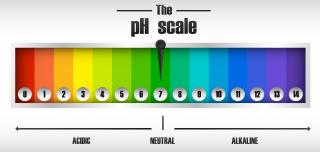 How to Adjust the pH in the Aquarium?