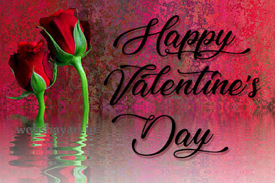 valentine  lovers day photos download