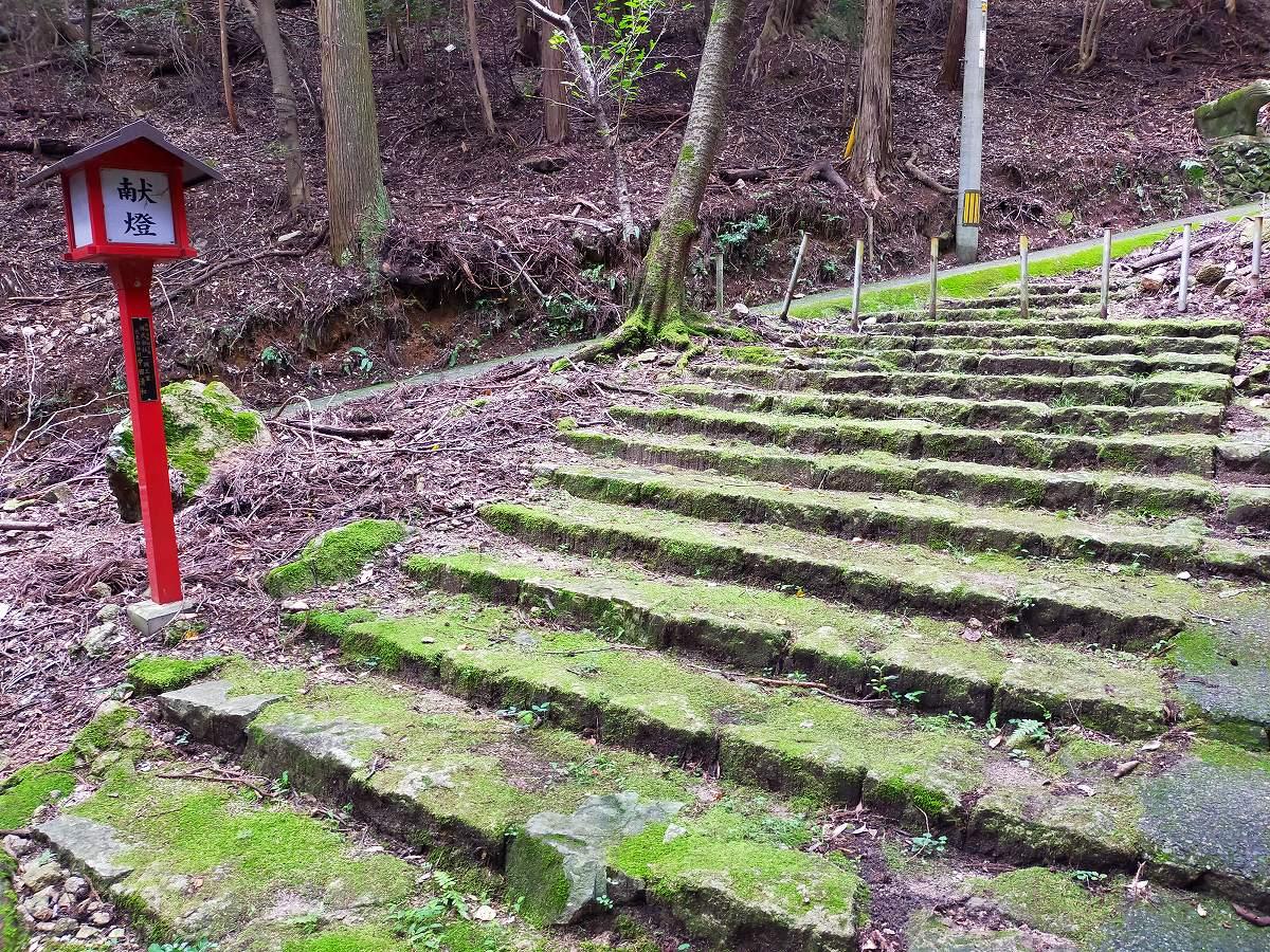 石灯籠の階段はずっと上まで続きます。