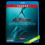 Terror a 47 metros: El segundo ataque (2019) Full HD 1080p Latino