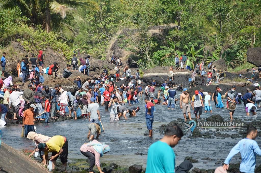 Waduk Wadaslintang Ditutup, Ribuan Warga Padureso Gelar Tradisi Tangkap Ikan