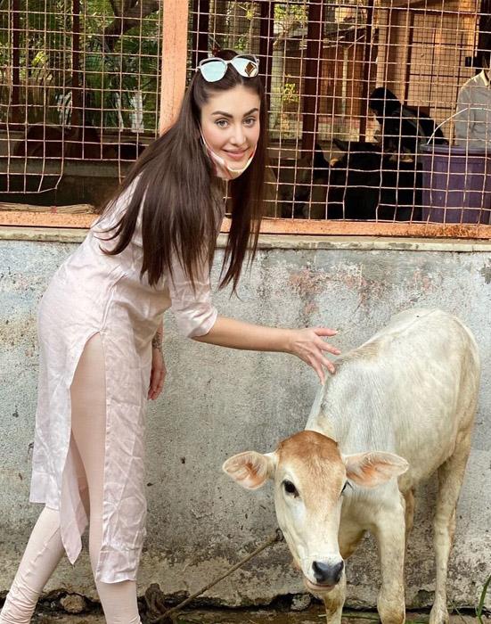 Shefali Jariwala latest image