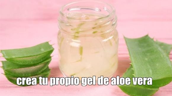 Cómo hacer tu propio gel y crema de Aloe Vera con pocos recursos
