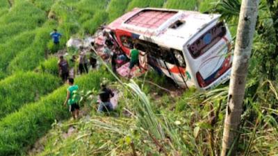 Diduga Sopir Mengantuk, Bus Family Hilang Kendali dan Masuk Sawah