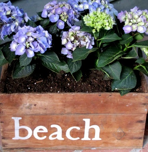 beach flower wood box