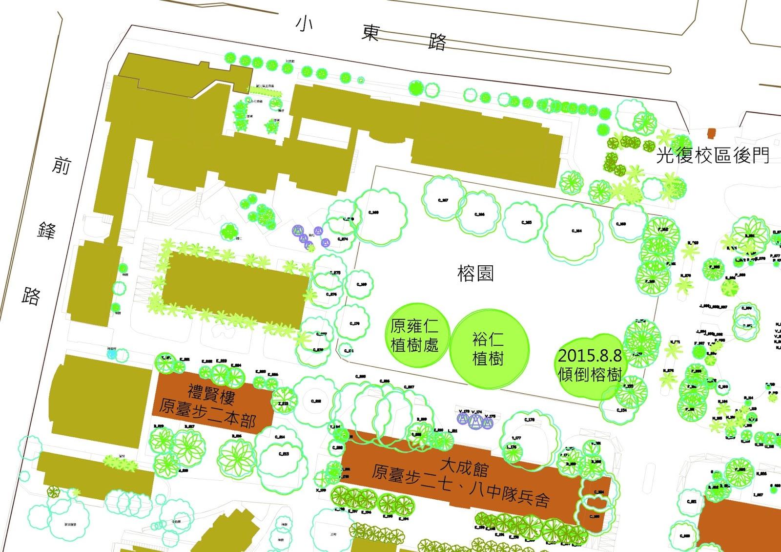 成大有樹: 2015.08.11 成大新聞:成大老榕颱風災受創 校方全力搶救使其原地恢復生機