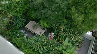 Dan Cooper garden