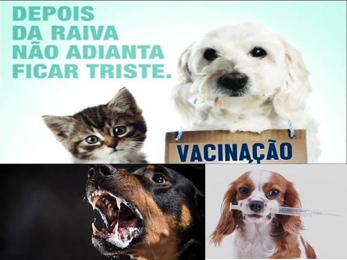 ADAPAR ARAPOTI - MAIS UM CASO DE RAIVA ZONA RURAL.