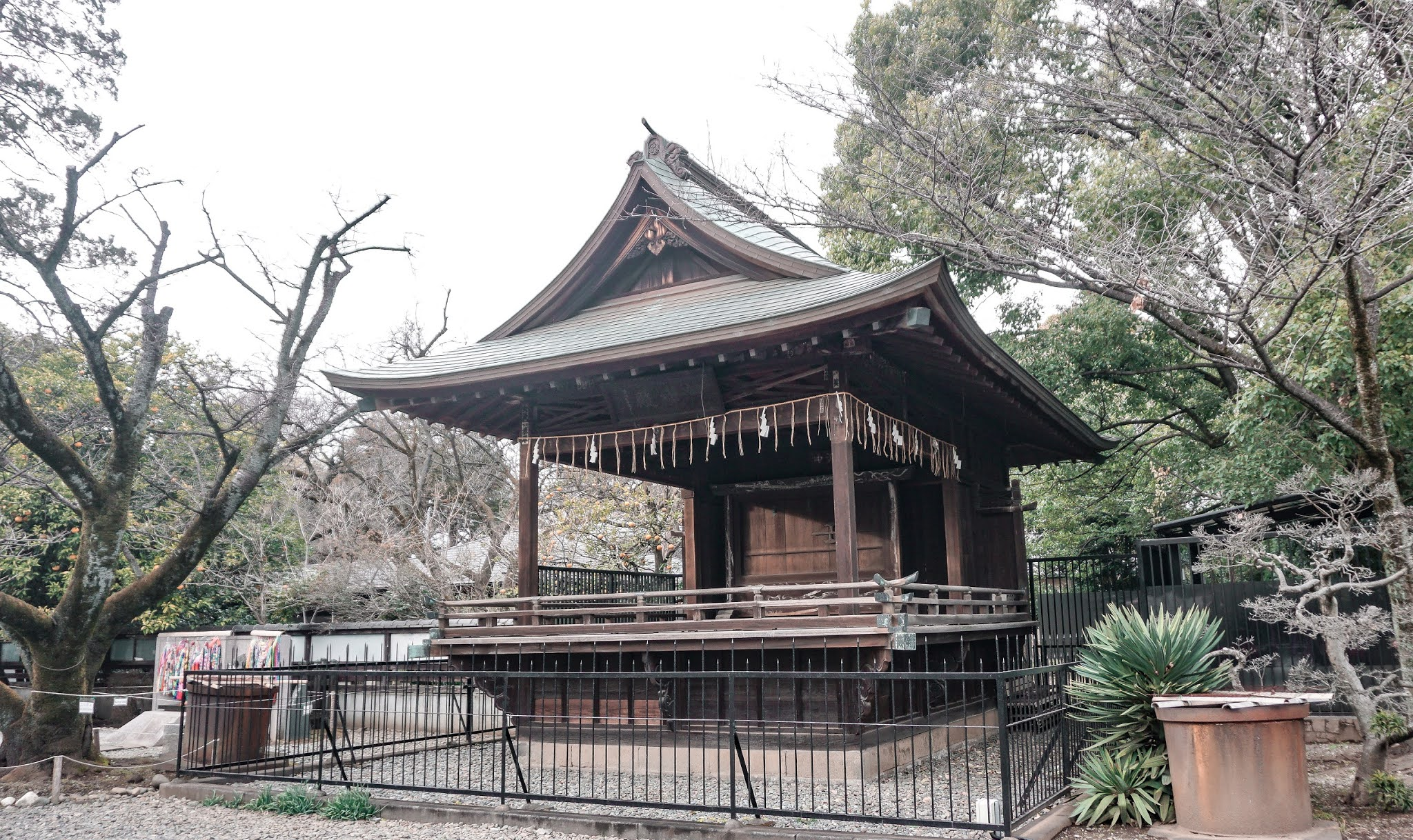 what to do in Tokyo, Japan Travel Guide, Parks in Tokyo, Ueno Park Tokyo, Ueno Zoo Tokyo, Things to do in Japan