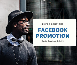 promote any business through facebook marketing