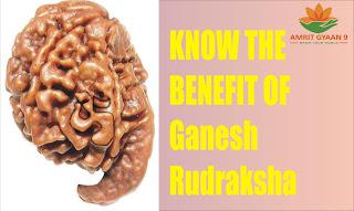Know The Benefits Of Ganesh Rudraksha