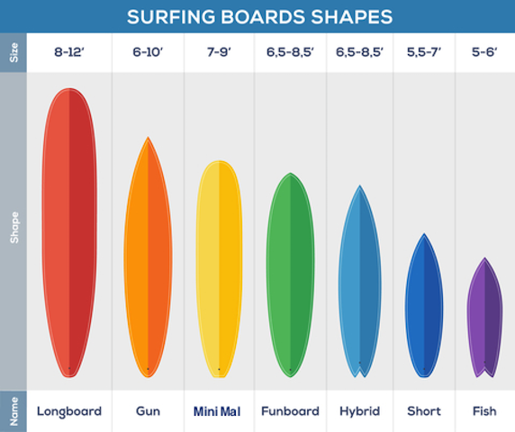 surfboard shapes showing longboard, gun, mini mal, funboard, hybrid and fish shapes.