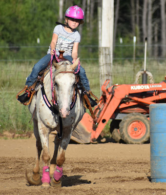 On the light side back in the saddle for Where can i go horseback riding near me