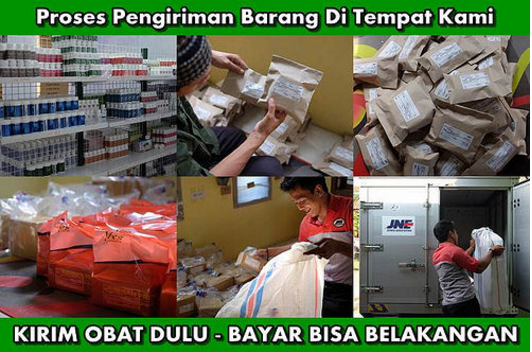 Agen QNC Jelly Gamat Jakarta