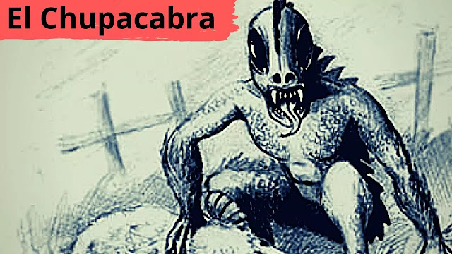 Mystery Monster El Chupacabra In Manipur