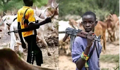 Fulani herdsmen list conditions to stop killing in Nigeria
