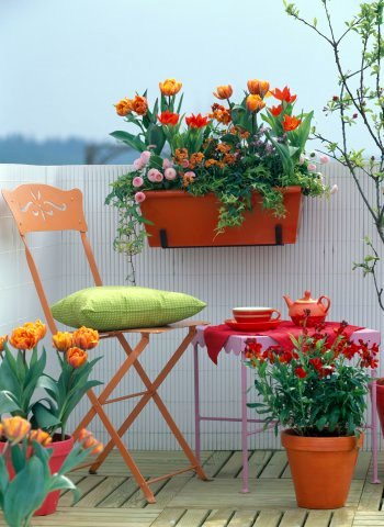 Patio flower ideas. flower pot ideas for patio patio ideas with ...