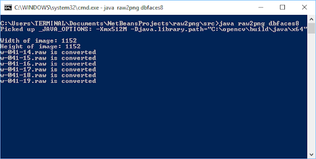 Raw to PNG Converter in Java
