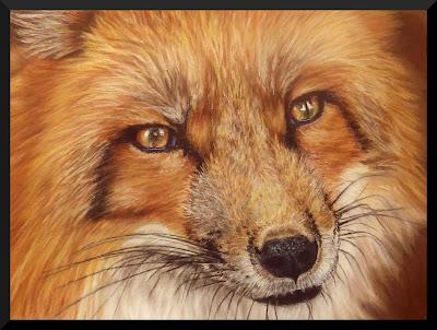 pastel animalier, renard, animaux, faune sauvage
