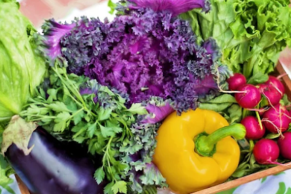 3 Benefits of Vegetables for Body Health