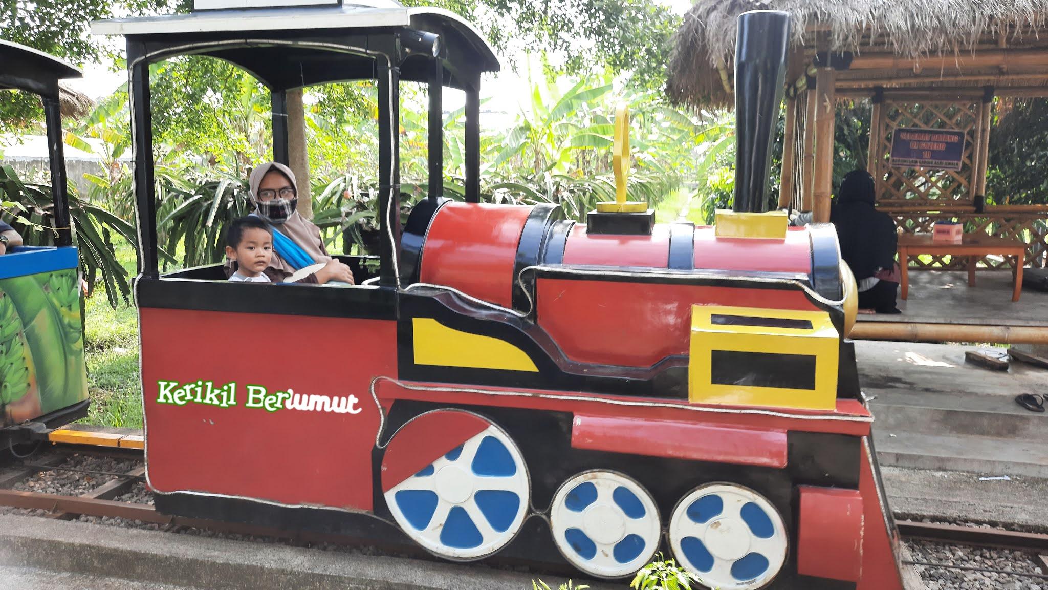 Kereta Kelinci