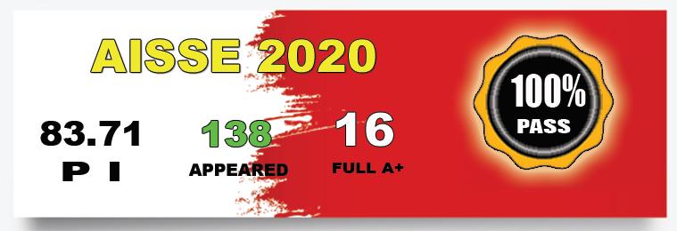 AISSE 2020 - VIDYALAYA SECURES 100% PASS