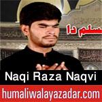 https://www.humaliwalayazadar.com/2020/08/syed-naqi-raza-naqvi-nohay-2021.html