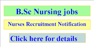 B.Sc. Nursing Jobs in Madhya Pradesh Professional Examination Board