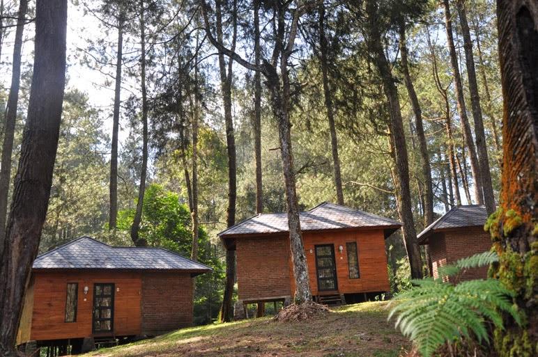OUTBOUND LEMBANG | Akomodasi Bungalow Grafika Cikole