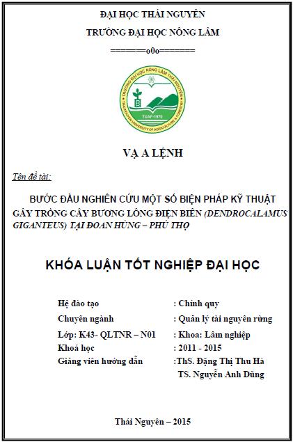 Bước đầu nghiên cứu một số biện pháp kỹ thuật gây trồng cây Bương lông điện biên (Dendrocalamus giganteus) tại Đoan Hùng – Phú Thọ