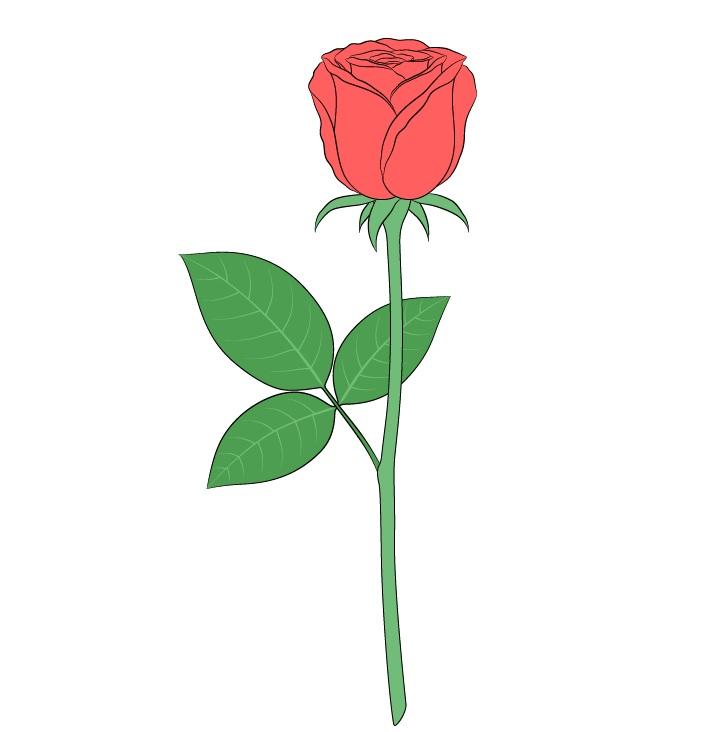 Gambar warna mawar penuh