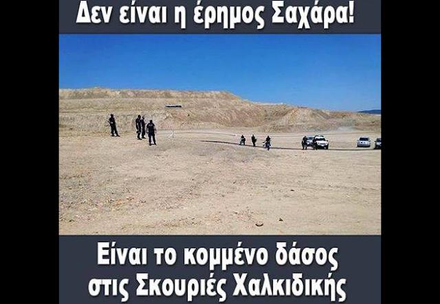 Η καταστροφή στις σκουριές Χαλκιδικής