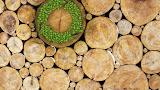 Welke materialen zijn écht duurzaam?