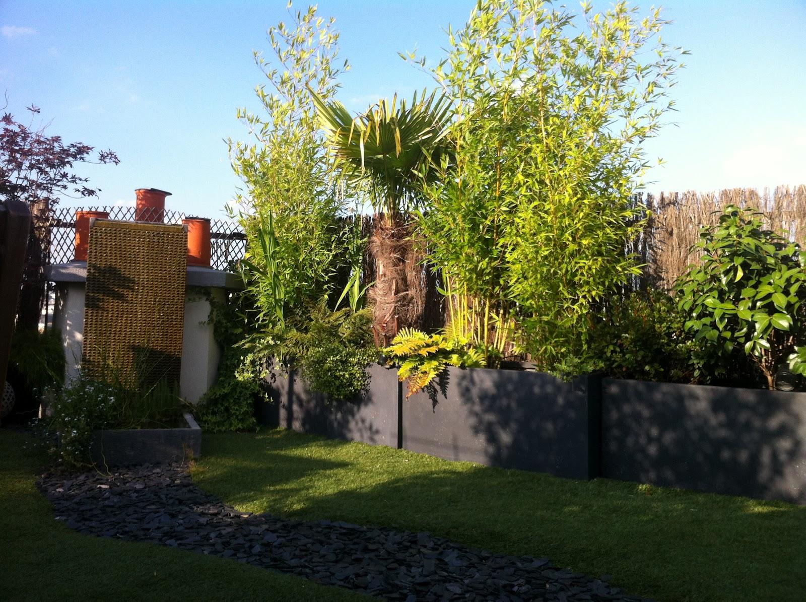 un jardin sur le toit juillet 2012 les plantes s 39 intallent doucement. Black Bedroom Furniture Sets. Home Design Ideas