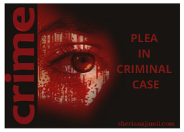 Plea in criminal case – meaning, types and everything you need to know