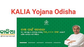 Kalia Yojana in Odisha