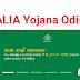 Kalia Yojana in Odisha | Kalia Yojana List 2020 | kalia.co.in  List