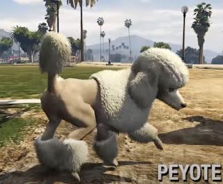 GTA Online Peyote Plant glitches are Funny
